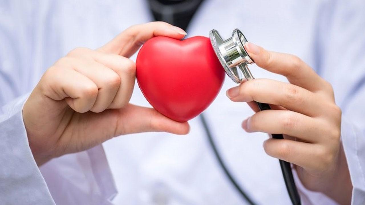 آشنایی با بهترین دکترهای قلب ایران که قابلیت امکان رزرو وقت را دارند!